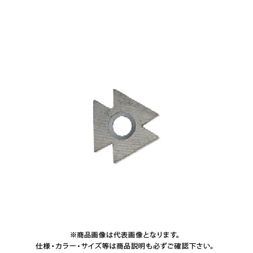 SHAVIV D80ブレード超硬 10PK 151-29031