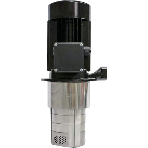 【直送品】テラル 多段浸漬型クーラントポンプLBK 口径20mm LBK4-80/3-E