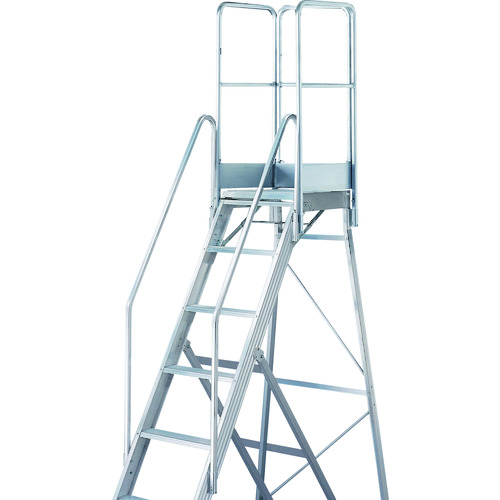 【個別送料1000円】【直送品】TRUSCO TDAD用フルセット手すり 高さ1100mm 本体高さ2.10m用 TDAD-TF-210-110