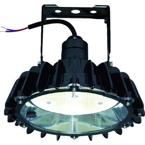 日立 高天井用LEDランプ アームタイプ 特殊環境対応 屋外形(塩害対応) RBME11AMNC1