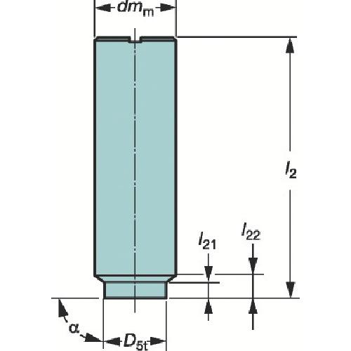 サンドビック コロミルEH円筒シャンクホルダ E10-A10-SS-075