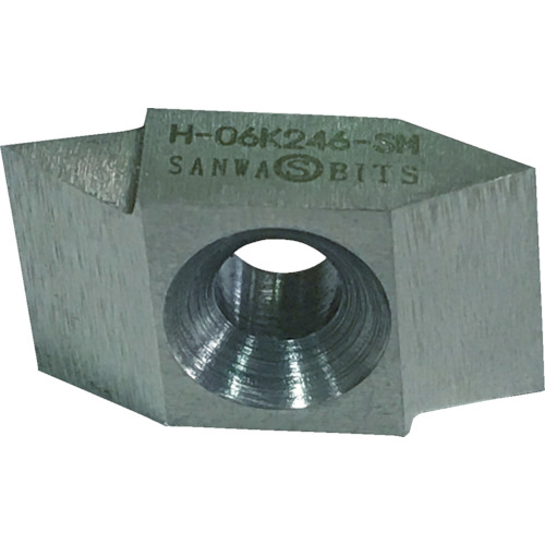 三和 ネジ切チップ 10個 H-06K246-SM