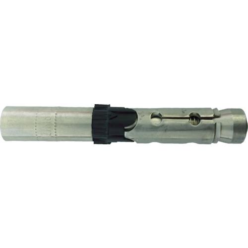 フィッシャー ボルトアンカー FH2 15/M10 I (25本入) 519014