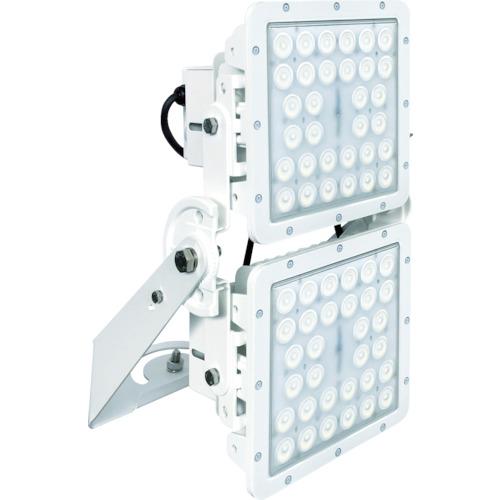 【直送品】T-NET SQ2000 投光器型 昼白色 SQ2000N-FA1717-BM