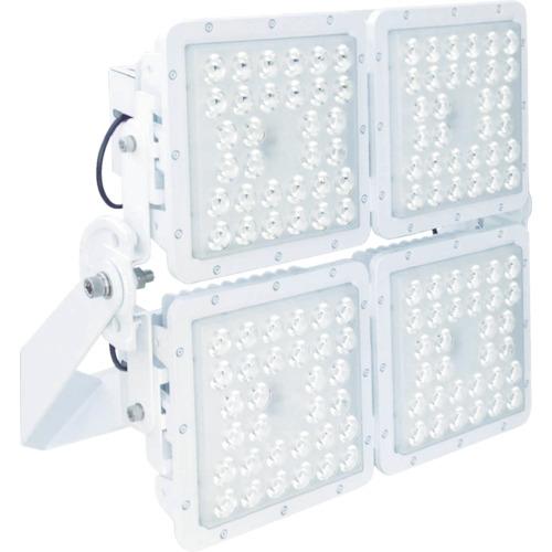 【直送品】T-NET SQ4000 投光器型 昼白色 SQ4000N-FA1717-BM