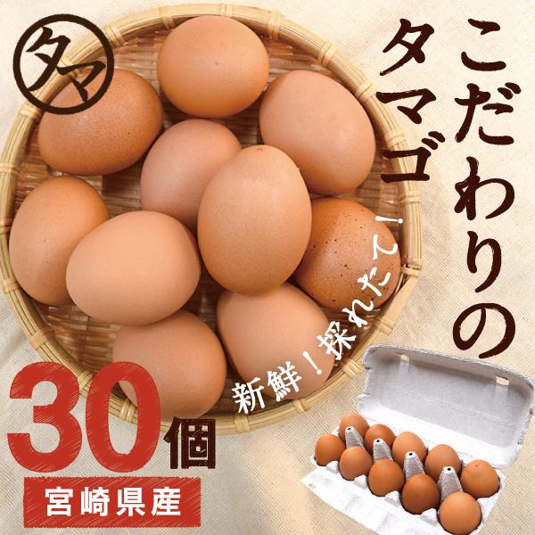 カテゴリトップ 南九州の美味しい野菜 宮崎産たまご