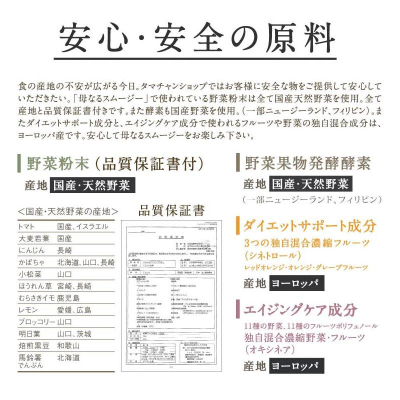 【定期】母なるスムージーサムネイル04
