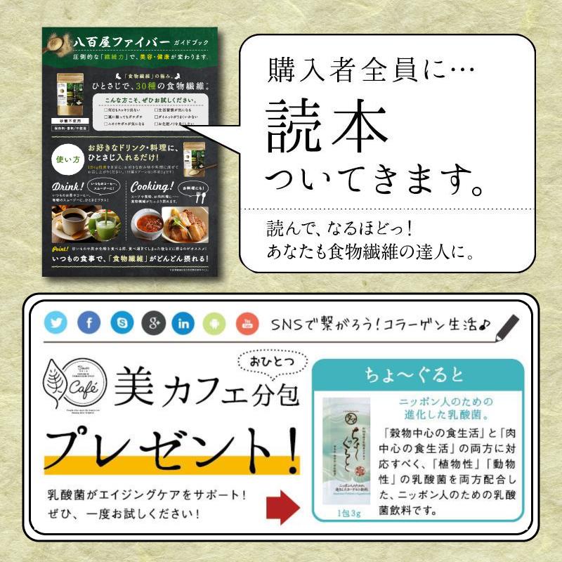 【定期】八百屋ファイバーサムネイル07