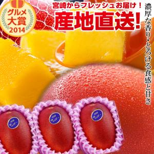 宮崎完熟マンゴー中玉サムネイル02
