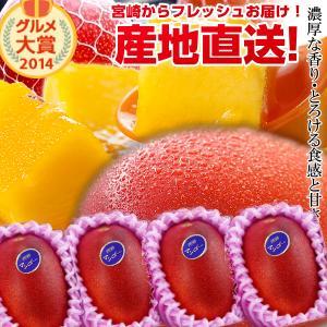 宮崎完熟マンゴー中玉サムネイル03