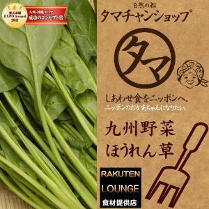 【九州 野菜】ほうれん草(1袋)九州産ほうれんそう/ホウレンソウ美味しくて緑黄食野菜の代表と言われるほどずば抜けた栄養の高い野菜(ほうれん草)|南九州産 やさい お取り寄せ おとりよせ 九州野菜 国産