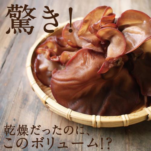 九州産 キクラゲサムネイル07