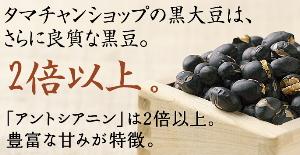 九州生產高檔烤豆子 500 克大豆營養完全保持不變,在吃的時候,和黑豆茶和煮的美味黑豆飲食建議健康添加劑免費 ! 風味和使用生產黑色細的特色的九州的優秀營養豆 クロダマル ↑