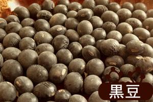"""九州岛出产的咖啡豆 5 公斤 (从 1 级黑色 26 年豆) 乐天市场交易的""""黑豆""""出售!"""