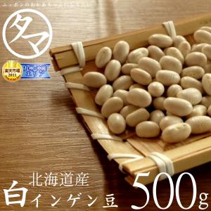 北海道白芸豆 500 克 (26 年生产单级 ☆ ☆) 乐天市场特别价格 '白色白豆' 现已发售 ! 特设特设甜美细腻的质地很好。