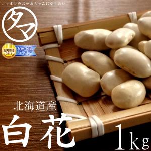 白花豆(シロハナマメ)サムネイル02