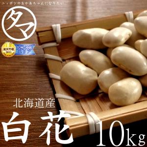 白花豆(シロハナマメ)サムネイル04