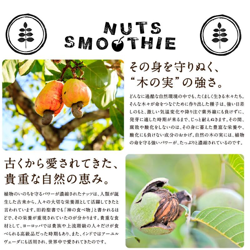 木の実スムージーサムネイル07