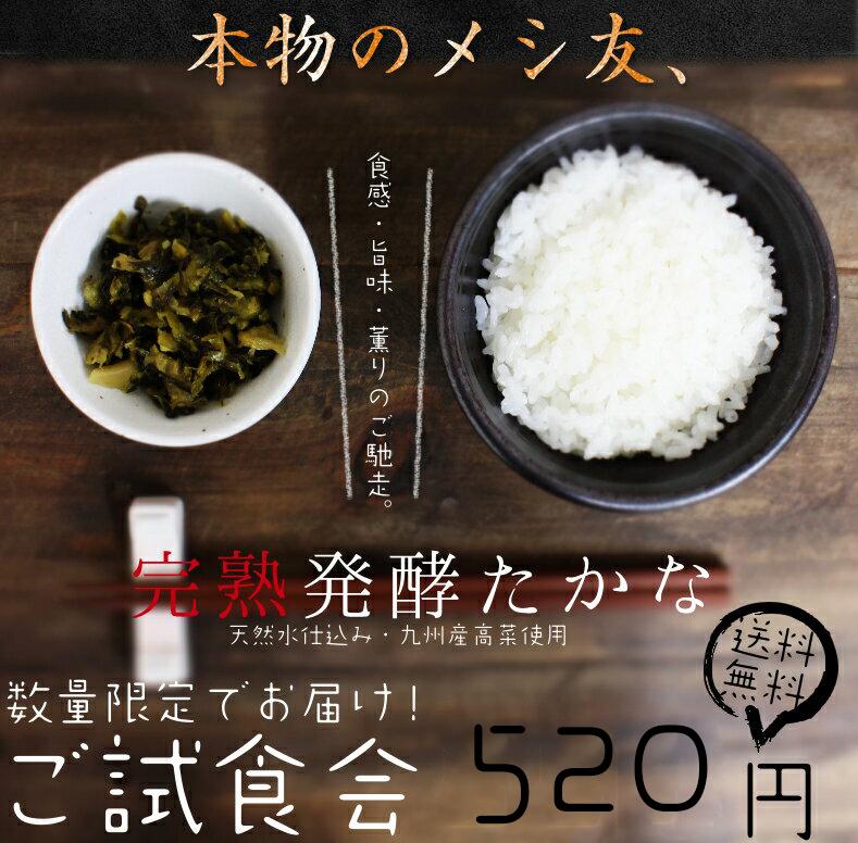 発酵高菜サムネイル01