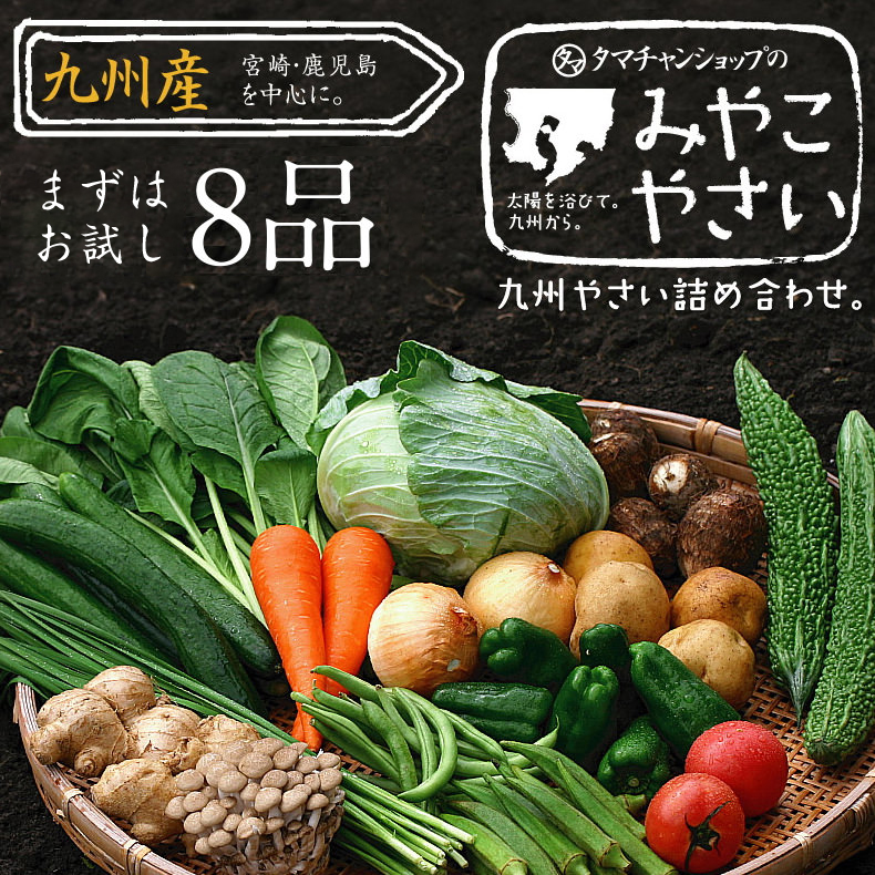 九州野菜セットサムネイル01