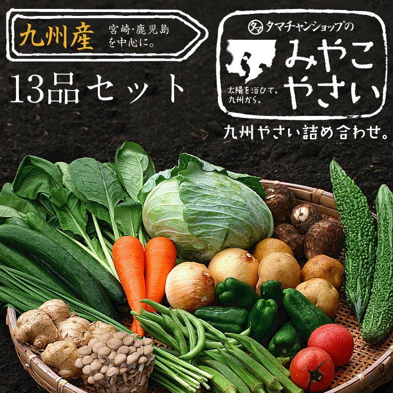 九州野菜セットサムネイル02