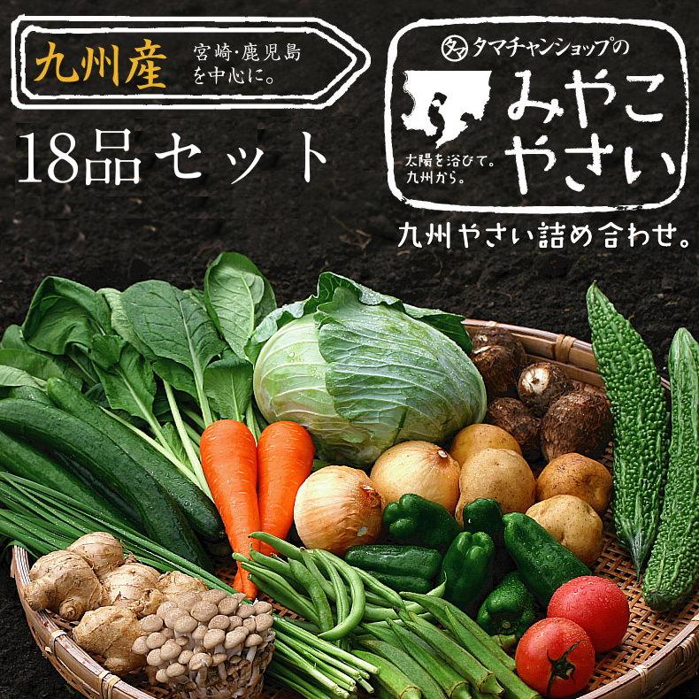 九州野菜セットサムネイル03