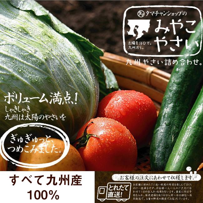 九州野菜セットサムネイル08