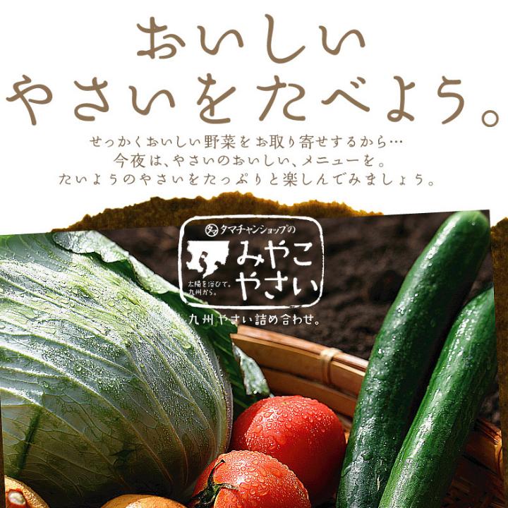 九州野菜セットサムネイル04