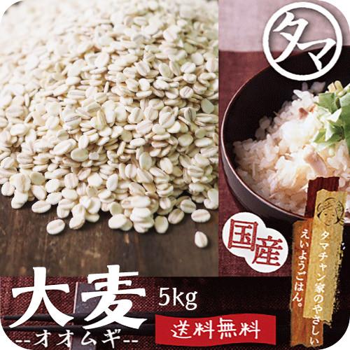 【送料無料】九州産 大麦(押し麦) 5kg食べる食物繊維・大麦βグルカンの宝庫な食材。注目される第6の栄養素とされる食物繊維を豊富に含んだ食材。炊飯や料理にお使い頂けます。【オオムギ おおむぎ】【胚芽押し麦】【押麦】【無添加/遺伝子組み換えなし】