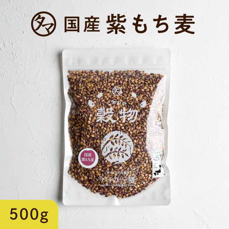 日本でも珍しい紫もち麦 食物繊維 ポリフェノールも一緒に食べよう 送料無料 超希少な紫もち麦500g 九州産 平成30年度産紫が濃い状態で収穫したもち麦です 捧呈 AL完売しました。 もち麦に比べてポリフェノールの1種 アントシアニジンを多く含み 無添加 モチムギ もち麦 より一層もちもちぷちぷちの食感が楽しめます 国産 ダイシモチ