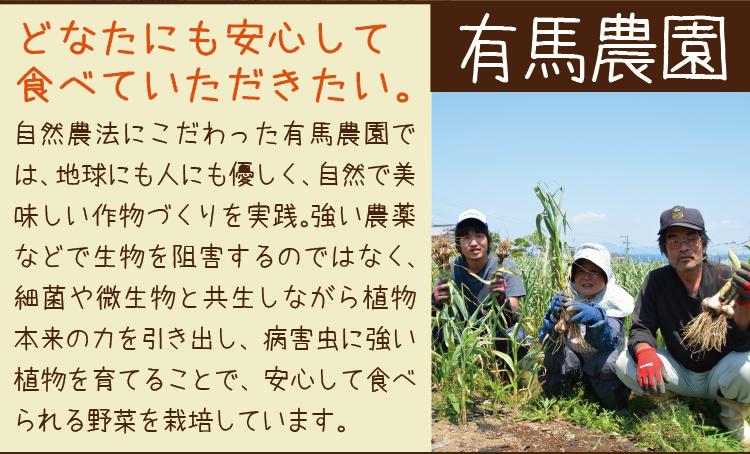【5月7日頃から発送予定】旬の生にんにく 2kg 自然農法 長崎産 島原半島産 国産 ニンニク にんにく