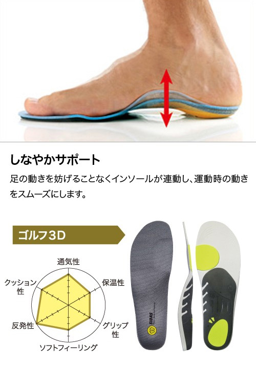 供高尔夫球使用的鞋垫GOLF 3D 326914 shiura SIDAS(羊齿草)