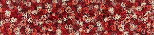 K013F wash+dry(ウォッシュアンドドライ)マット Punilla red(プニリャレッド) 60×260cm