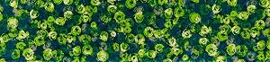 K015F wash+dry(ウォッシュアンドドライ)マット Punilla green(プニリャグリーン) 60×260cm