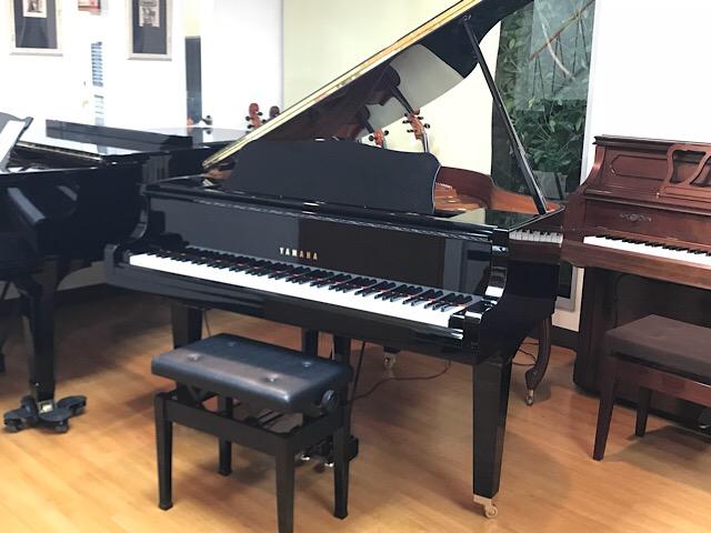 【最安値挑戦】 【【】】【グランドピアノ】【グランドピアノ A1L】YAMAHA ヤマハグランドピアノ A1L, 越前かに職人 甲羅組:a3000f65 --- unlimitedrobuxgenerator.com