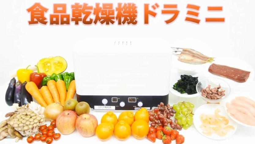 食品乾燥機、ドライフルーツメーカー[ドラミニ] 干し野菜、ドライフルーツ、ジャーキー作りなど、タイマー1~99時間、温度調節35~70℃