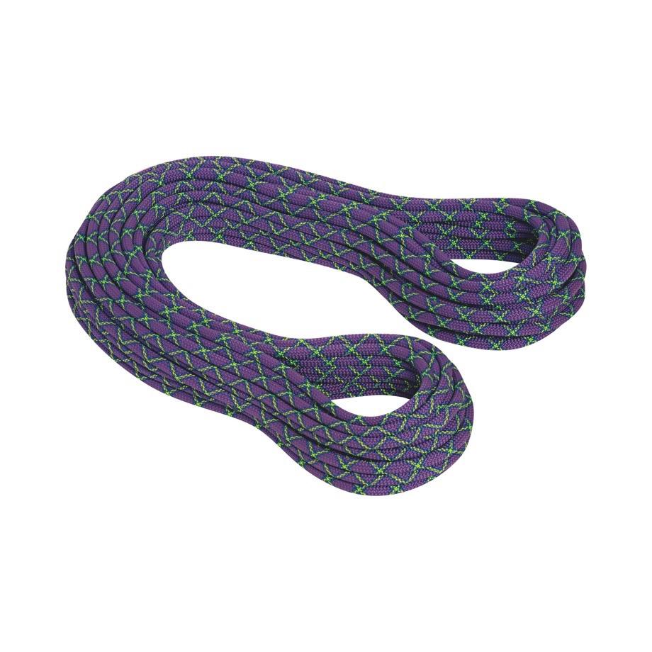 マムート(MAMMUT) 10.0 Galaxy Protect シングルロープ 60m 2010-02721-51175