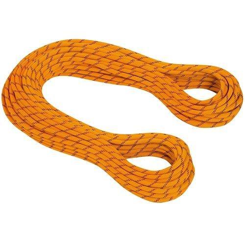 マムート(MAMMUT) 8.5 Genesis Dry 2010-02801 11146 yellow-orange クライミング用品【50m】