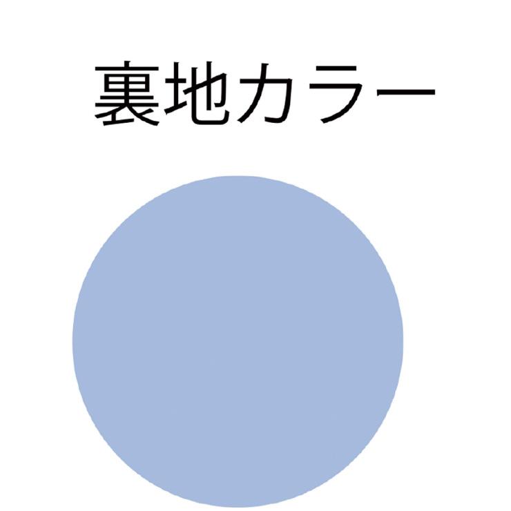 MIZUNO(ミズノ) セパレーツ(3分丈) スイム フィットネス用水着 レディース N2JG934907