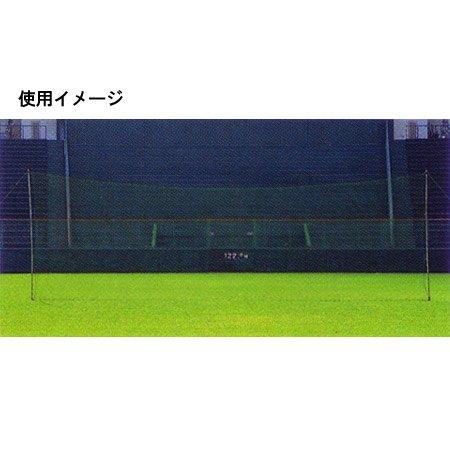 MIZUNO ミズノ バックネット 2NA301