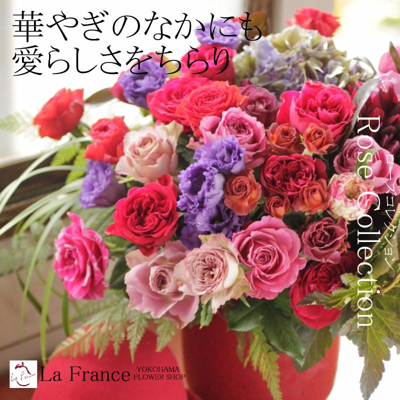 Lafrance Celebrate The Gifts Of Roses Rose Collection Flower