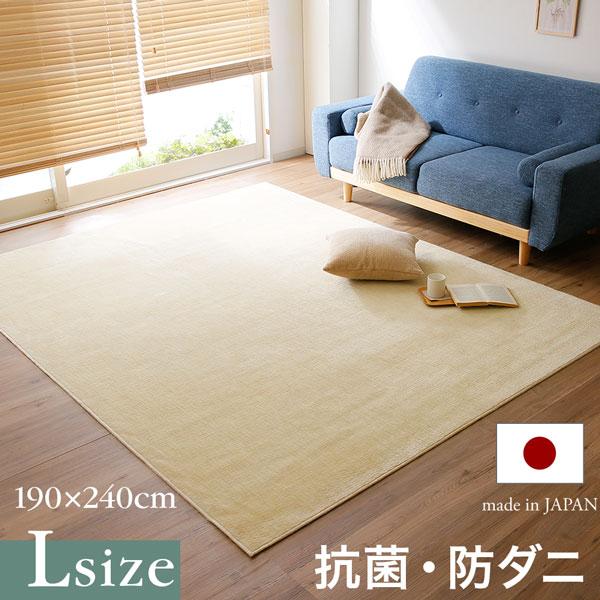 日本製 ラグマット 抗菌 防ダニ センターラグ 絨毯 じゅうたん ラグ オールシーズン 長方形 ワンルーム おしゃれ 軽い 爽やか 一人暮らし 夏用 ラグ