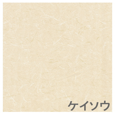 ヤマト家財宅急便 [代引不可]TOSO [トーソー] アクシエ アコーディオンドア200×173 ケイソウ