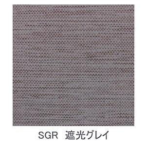 【送料無料】【大型便・時間指定不可】トーソー JOYsロールスクリーン 170x220 SGR 遮光グレイ