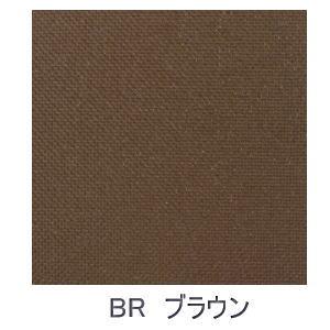 【送料無料】【大型便・時間指定不可】トーソー JOYsロールスクリーン 170x220 BR ブラウン