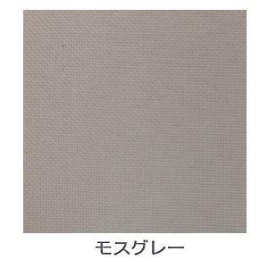 【送料無料】【大型便・時間指定不可】トーソー JOYsロールスクリーン 170×220 モスグレー