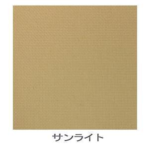 【送料無料】【大型便・時間指定不可】トーソー JOYsロールスクリーン 170×220 サンライト