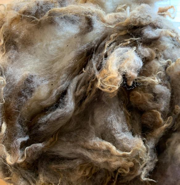 グリージーウール・シェットランド ベージュ1.55kg【紡毛 紡ぎ 手織り 織機 染め 羊毛 フェルト ニードル 糸 綿 ウール 絹】