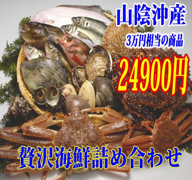 【山陰沖産】旬の朝とれ魚介類セット(貝類含む)【 産地直送の海鮮セット!≪送料無料≫