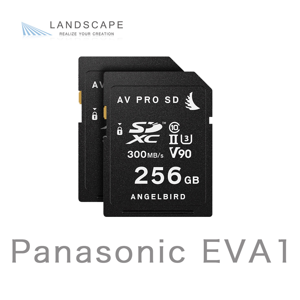 AngelbirdMATCH PACK for EVA1 256GB x 2(MP-EVA1-256SDX2)